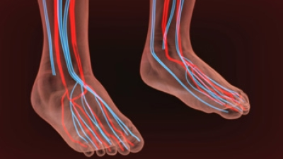 What Are the Symptoms of Neuropathy?